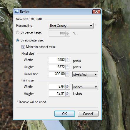Een foto verkleinen of een thumbnail maken van een foto?