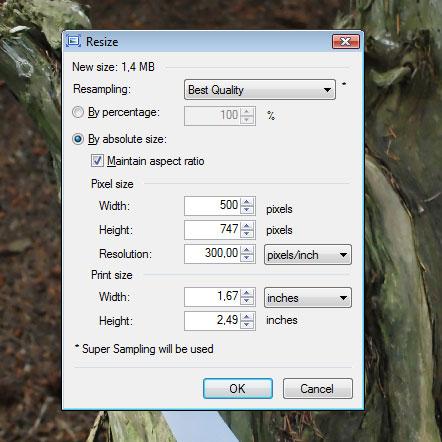 Paint.net behoudt de verhoudingen van een afbeelding als je deze verkleint