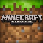 Minecraft downloaden en spelen op iPad.